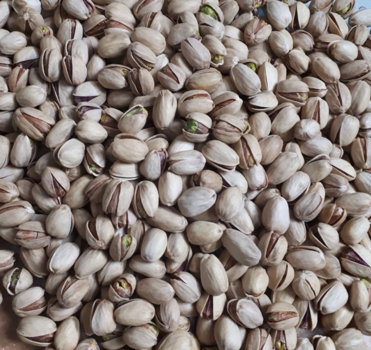 Sale of Iranian pistachios, kaleghchi model, size 26-28, separated
